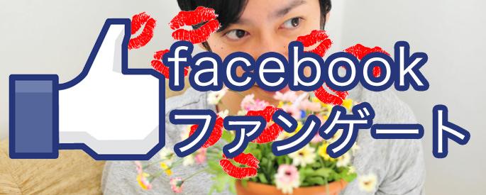 ずる賢くモテろ!facebookのイイネを爆増させるファンゲートの作り方