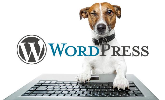 WordPressは簡単に更新できる?