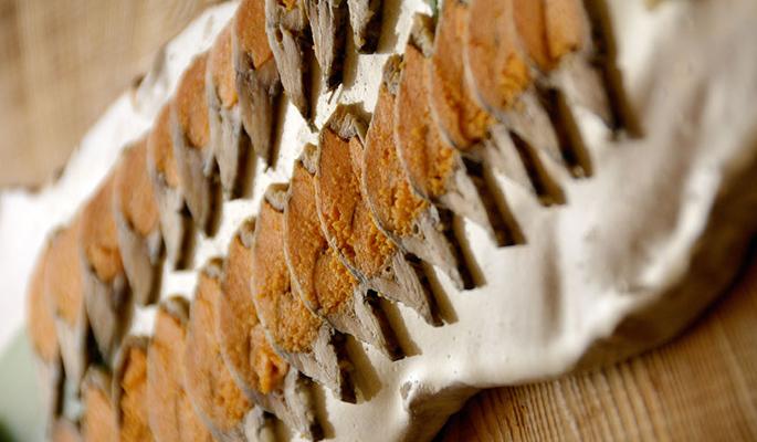 鮒寿司の画像 p1_23