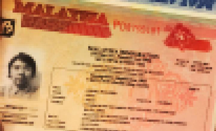 パスポートに貼られたビザ
