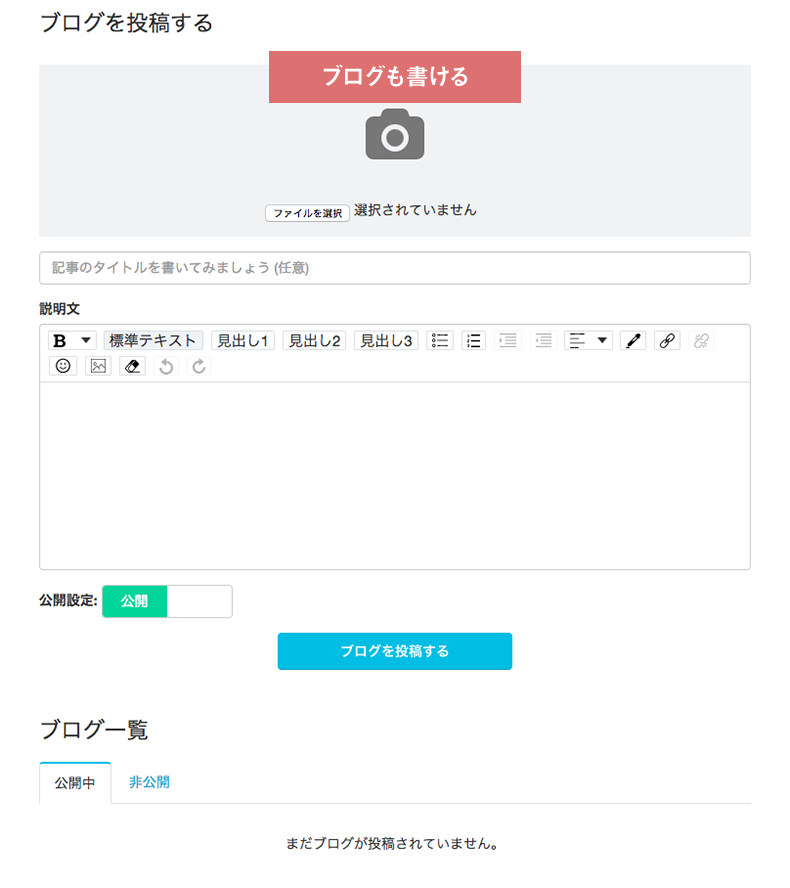 coubicのブログ更新画面